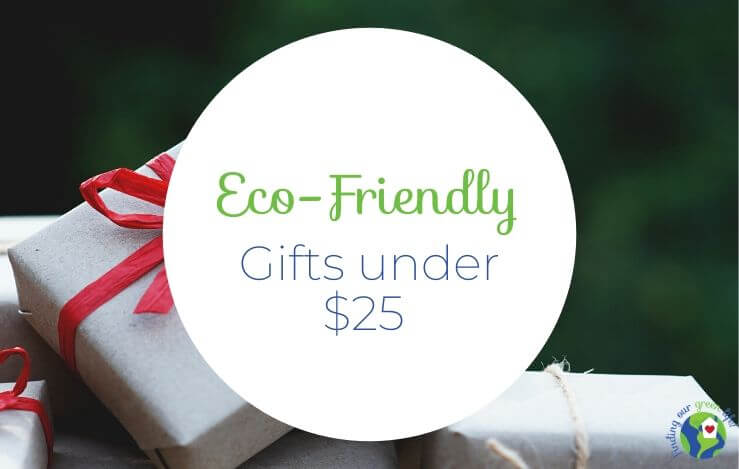 Eco-Friendly Gifts Under $25