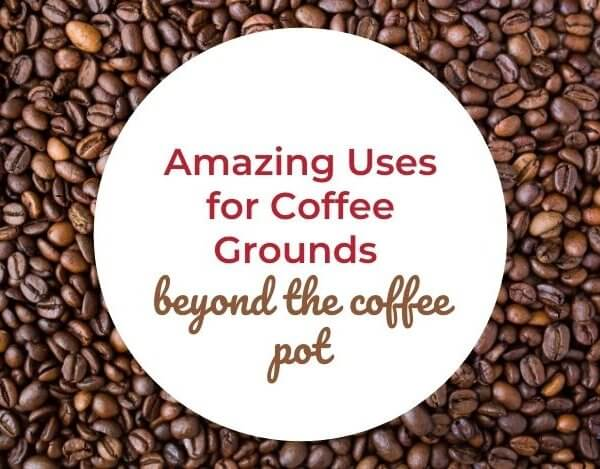 15 Amazing Uses for Coffee Grounds Beyond the Coffee Pot