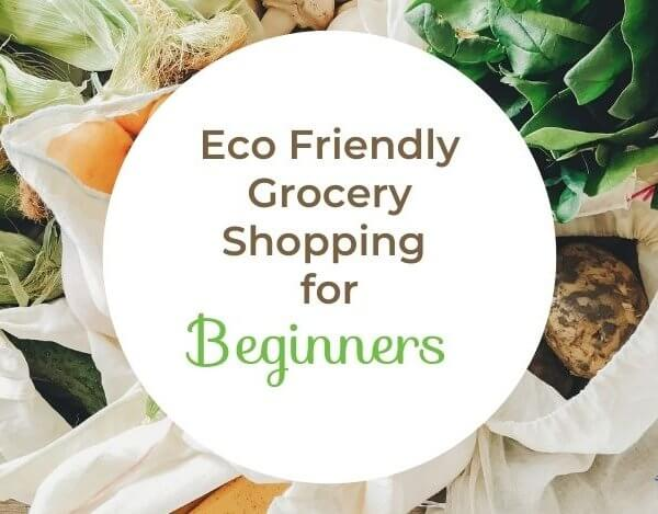 Eco Friendly Grocery Shopping for Beginners