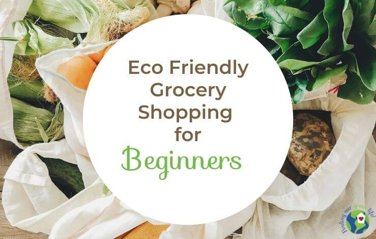 produce in reusable bags with text overlay