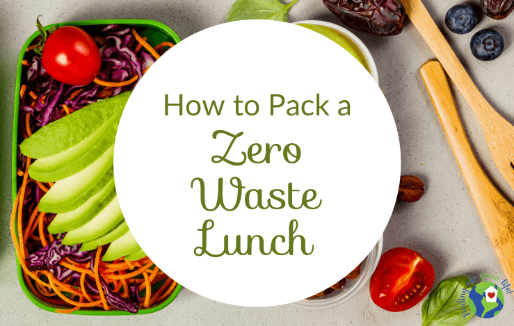 lunch in reusable containers with pack a zero waste lunch text overlay