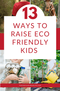 images of kids at zoo, hiking, collecting recyclables and water plants with ways to raise eco friendly kids text overlay