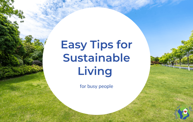 green grass surrounded by blue sky and trees with easy tips for sustainable living text overlay